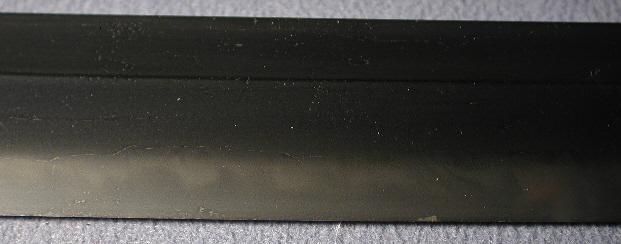 DSCN5525.JPG