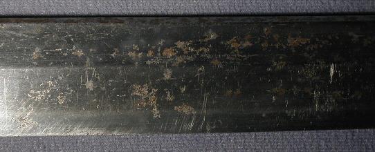 DSCN4645.JPG