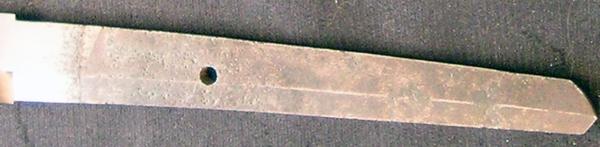 DSCN0529.JPG
