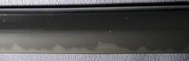 DSCN4401.JPG