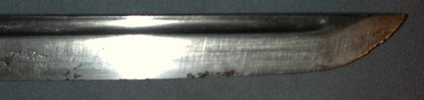 DSCN4240 (1).JPG