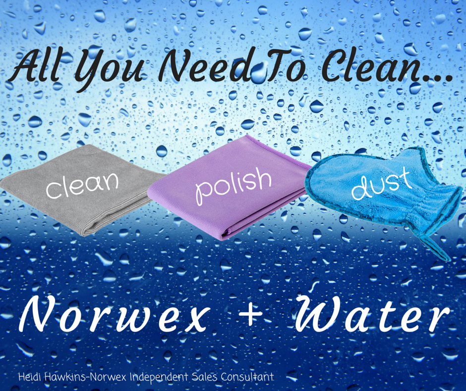 All You Need To Clean....png