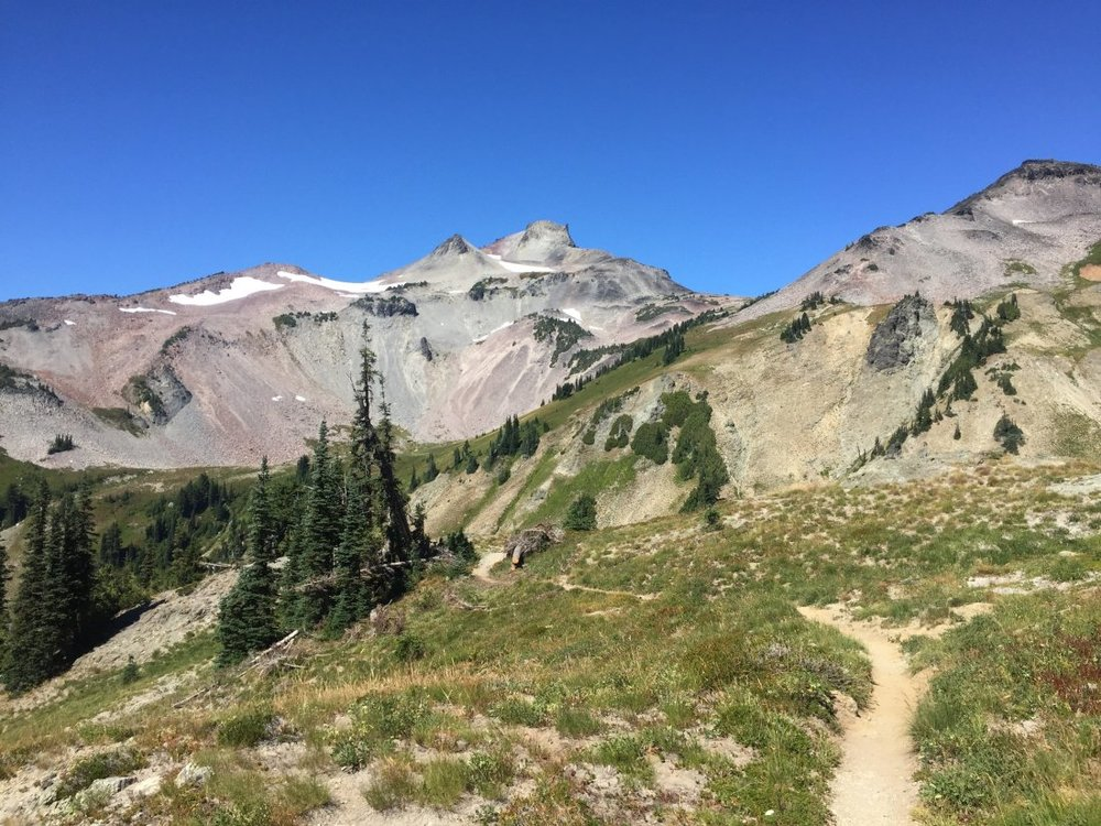Goat Rocks Wilderness in Washington