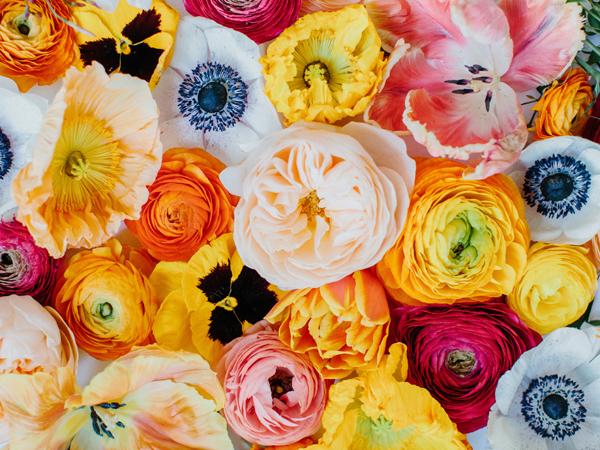 poppies,-tulips,-ranunculus.jpg