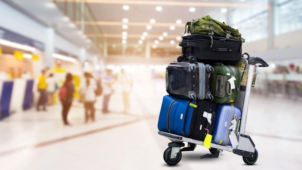 Travel Professional 2018