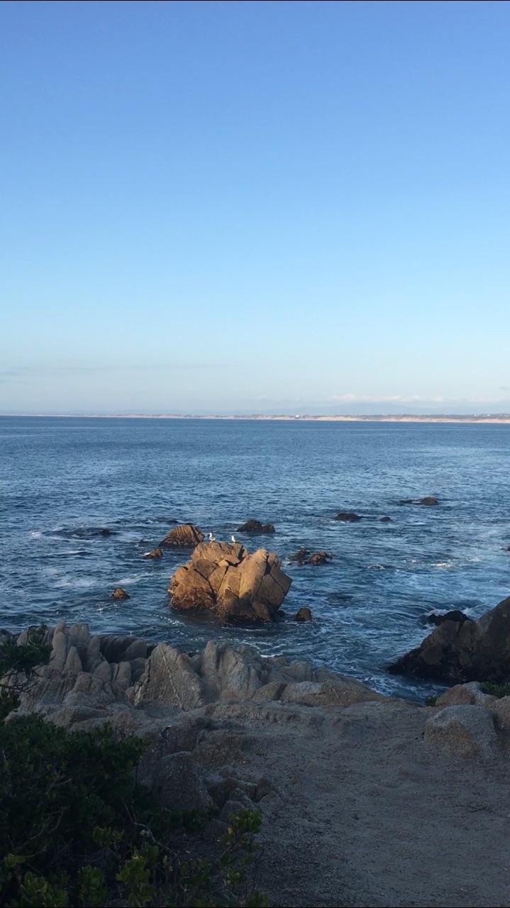 Monterey Bay Trail (4).jpg
