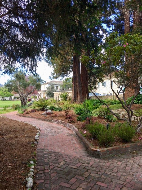 Monterey Landscape (3).jpg