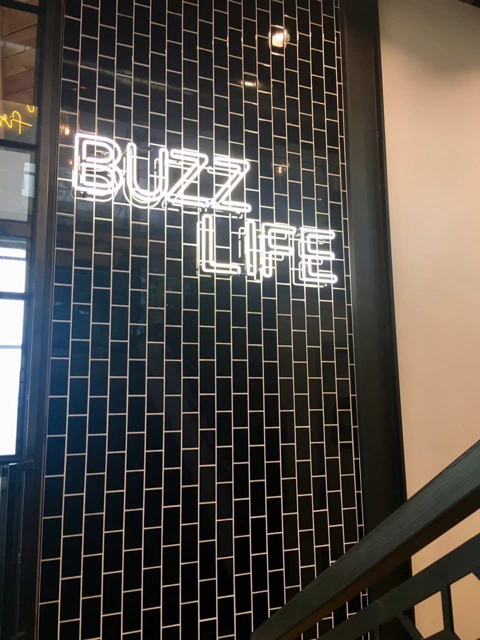 The Buzz Life in Hillcrest