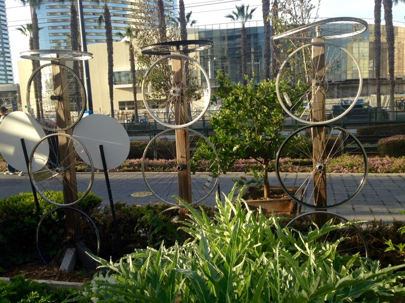 NCM - Garden (8).jpg