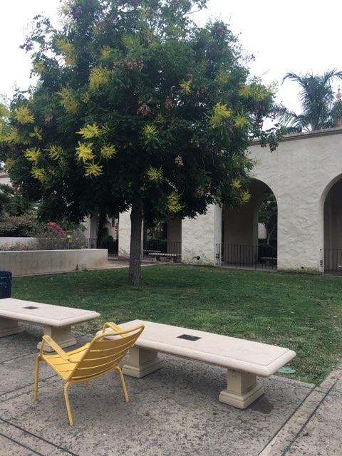 Balboa Park (2).jpg
