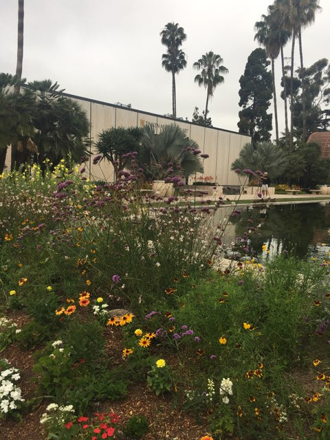 Balboa Park (5).jpg