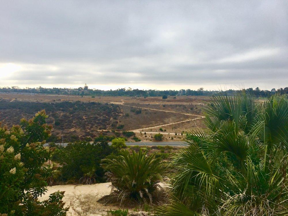 zigzag balboa park.jpg