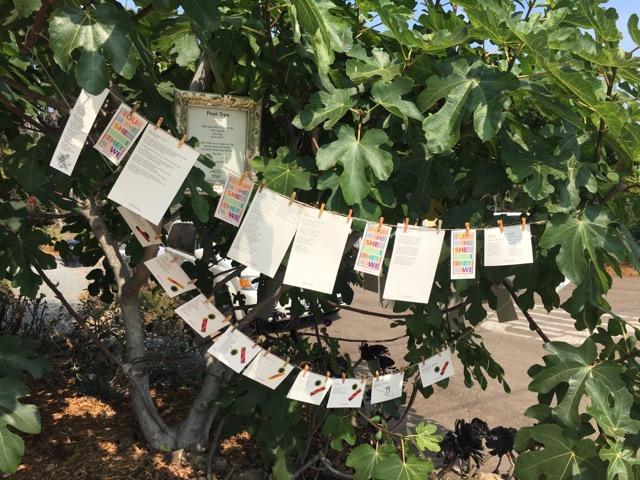 Poet Tree (3).jpg