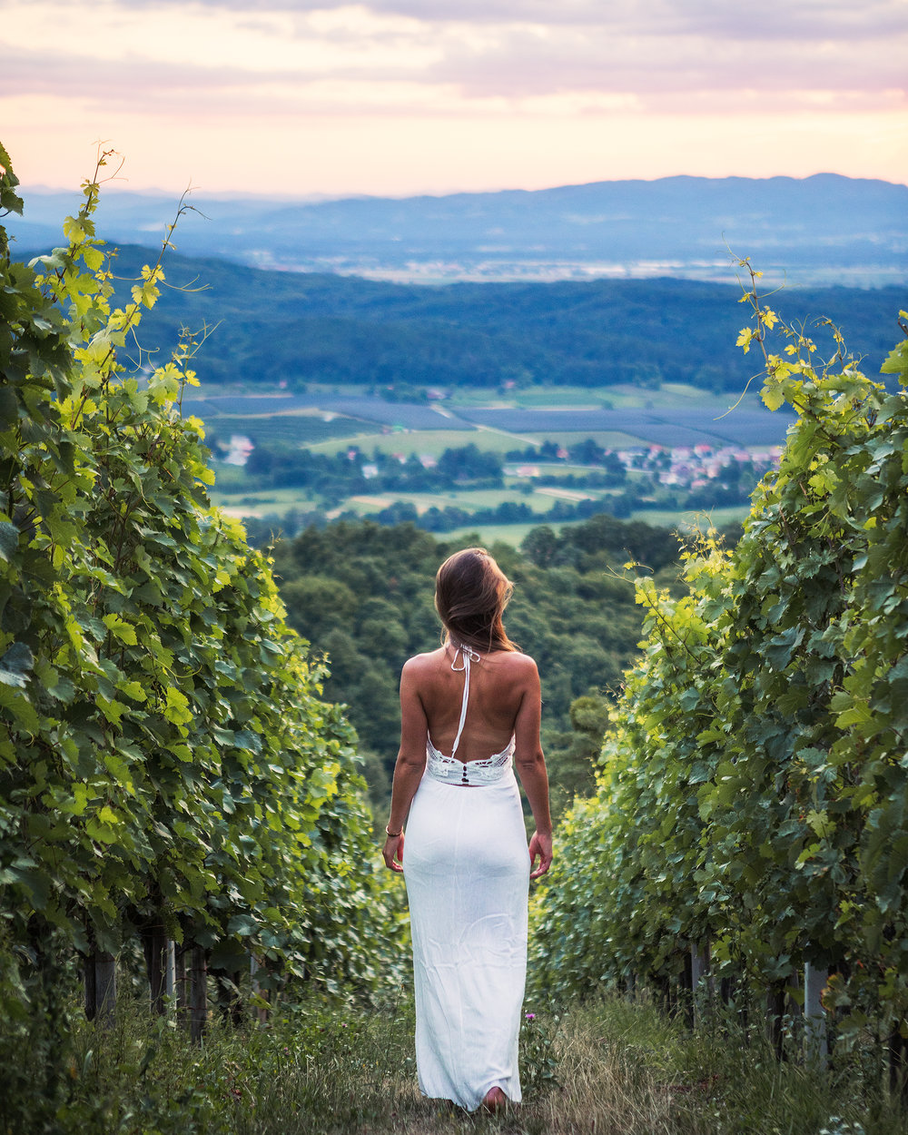 Vineyard-near-Kostanjevica-na-Krki-Slovenia-with-Andrea-by-Michael-Matti.jpg
