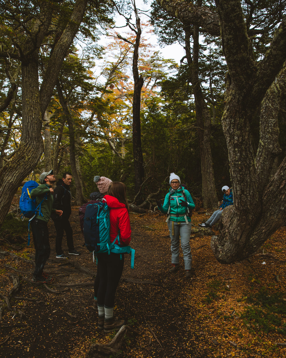 A down-day from hiking spent learning about the history area with a guided tour of Tierra del Fuego National Park.