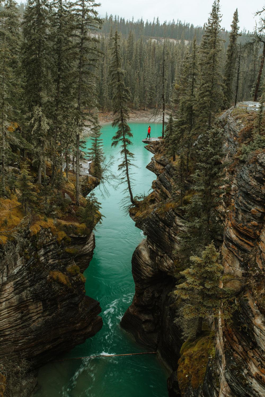 2016_11_10 Canadian Rockies-953.jpg