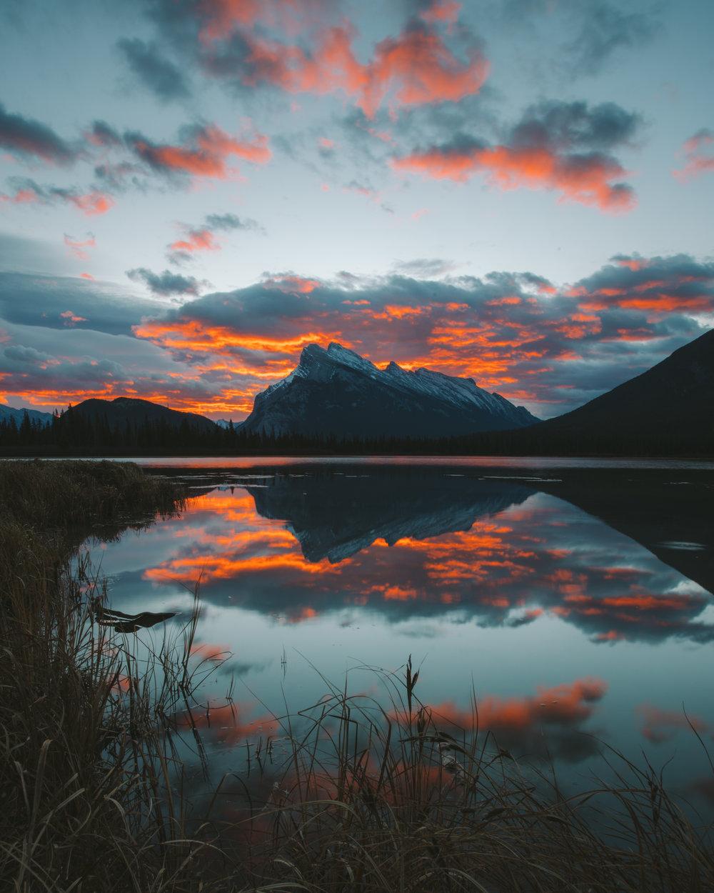 2016_11_10 Canadian Rockies-808-2.jpg
