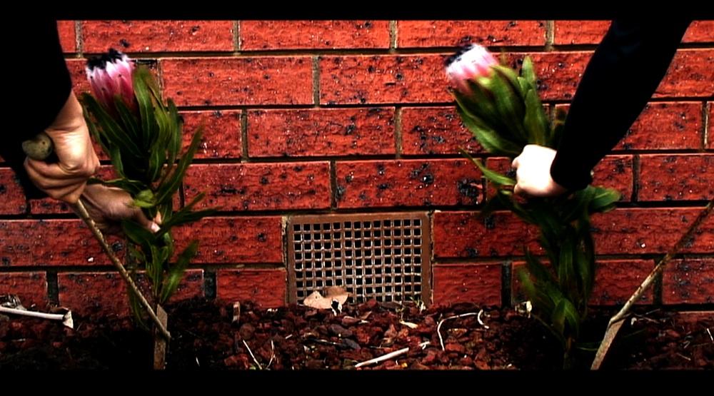 AJohannes Planting ritual 02b.jpg