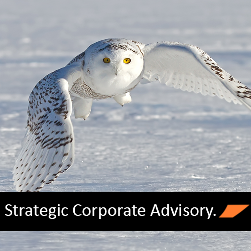 Strategic Corporate Advisory.