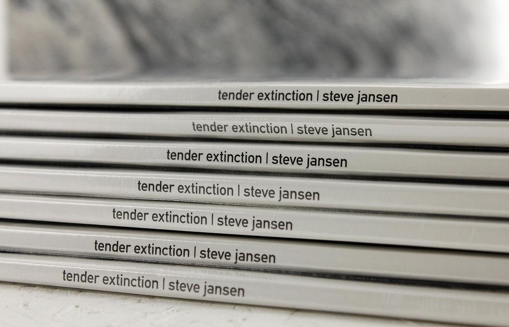 STEVE-JANSEN-DETAIL-2.jpg