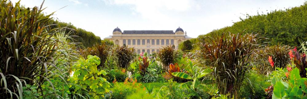 Natural-History-Museum-of-Paris