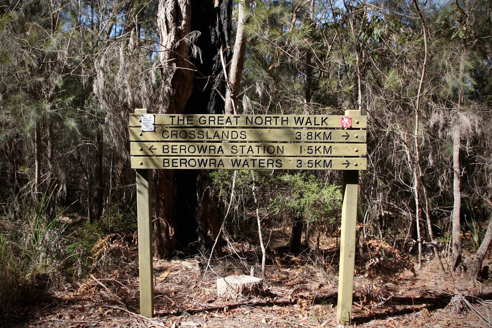 The Great North Walk runs all the way from Sydney to Newcastle. The stretch of the Great North Walk between Berowra and Mount Kuring-gai starts a short distance from Berowra train station.