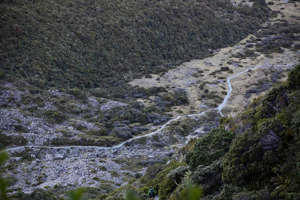 The view down, from part way up the Sealy Tarns track.