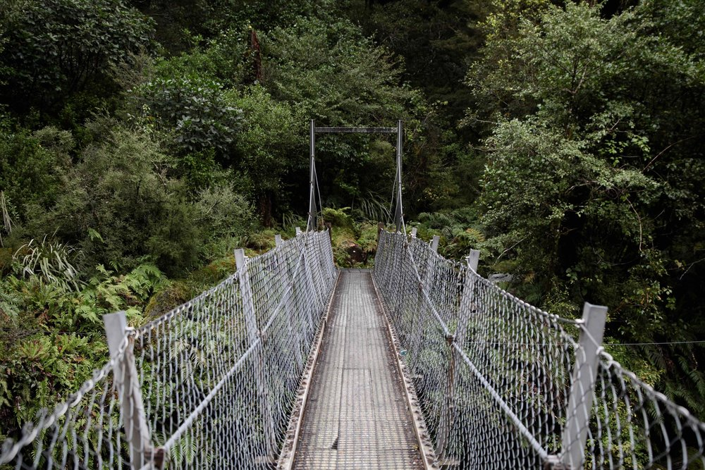 swing-bridge-lake-marian-track-fiordland.jpg