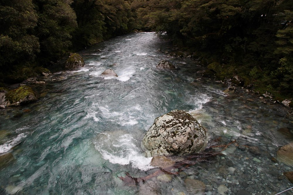 hollyford-valley-river-fiordland-national-park.jpg