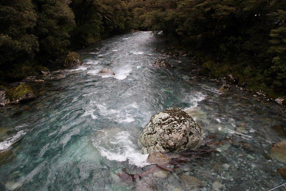 hollyford-valley-river-fiordland-national-park.jpg