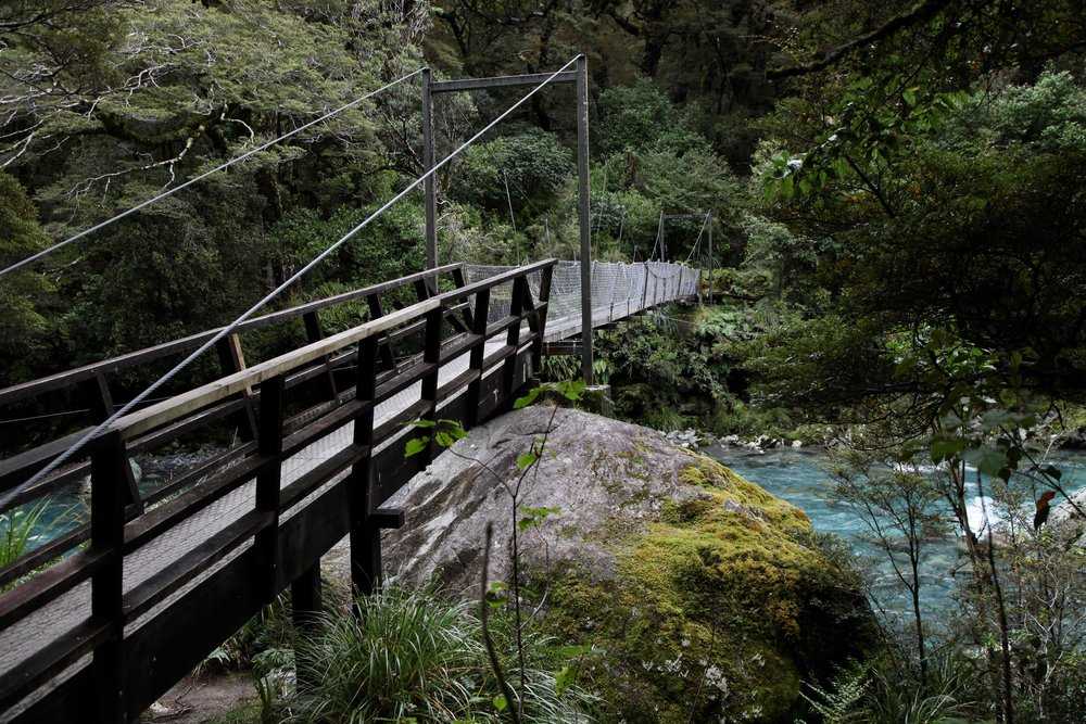 river-hollyford-valley-fiordland.jpg