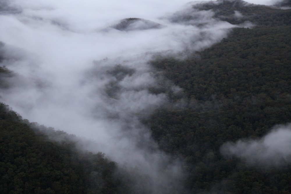 mountains-mist.jpg