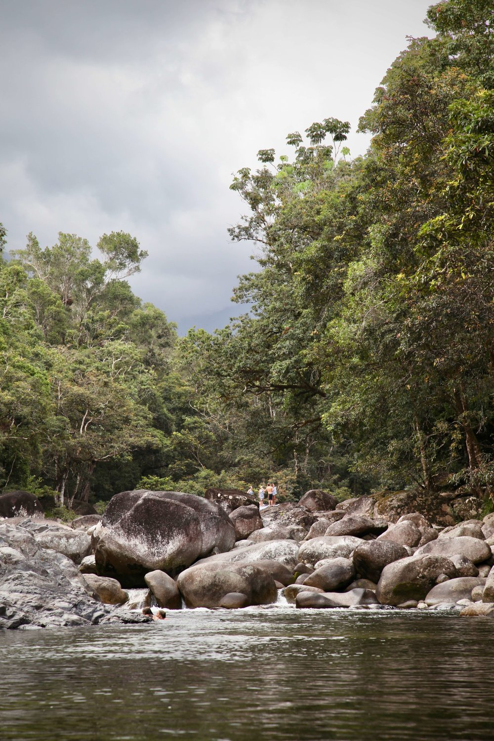 Mossman Gorge is an easy daytrip from Cairns or Port Douglas in far north Queensland.
