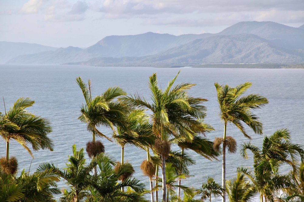 Trinity Bay lookout at Port Douglas offers a view over the ocean and 4 Mile Beach.