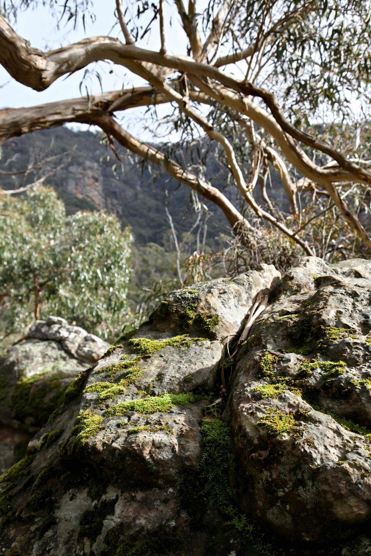 grampians-national-park-victoria.jpg