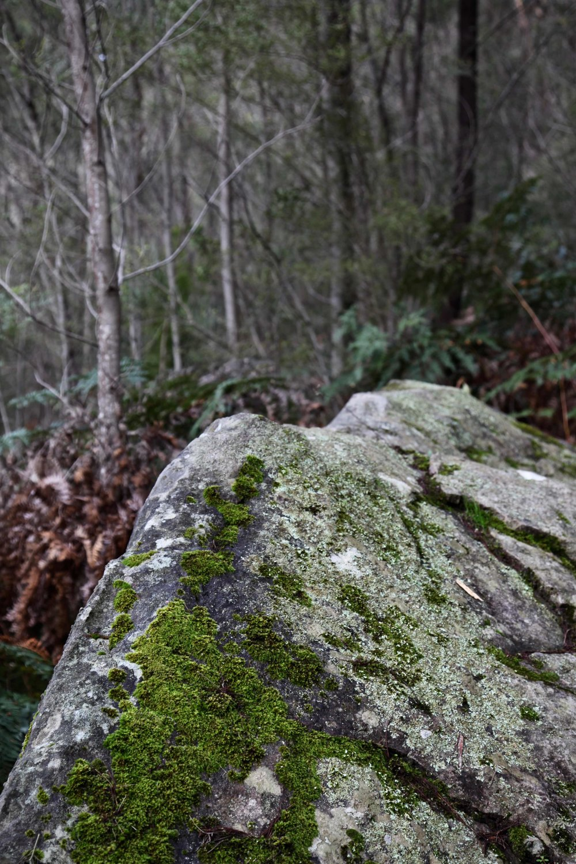 grampians-hike.jpg