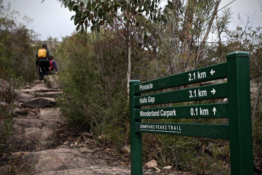pinnacle-hike-the-grampians.jpg