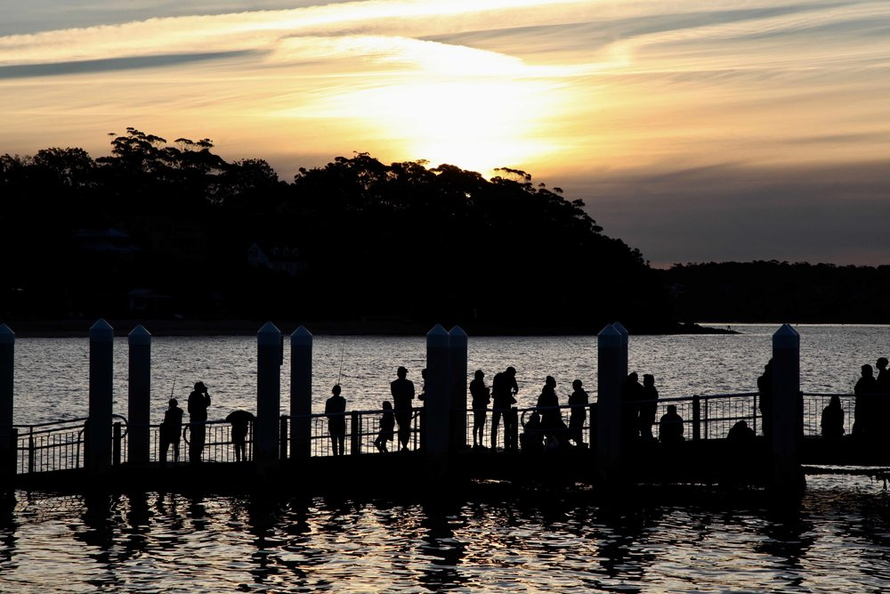 Take in sunset from Bundenna wharf: don't miss the last ferry back to Cronulla!