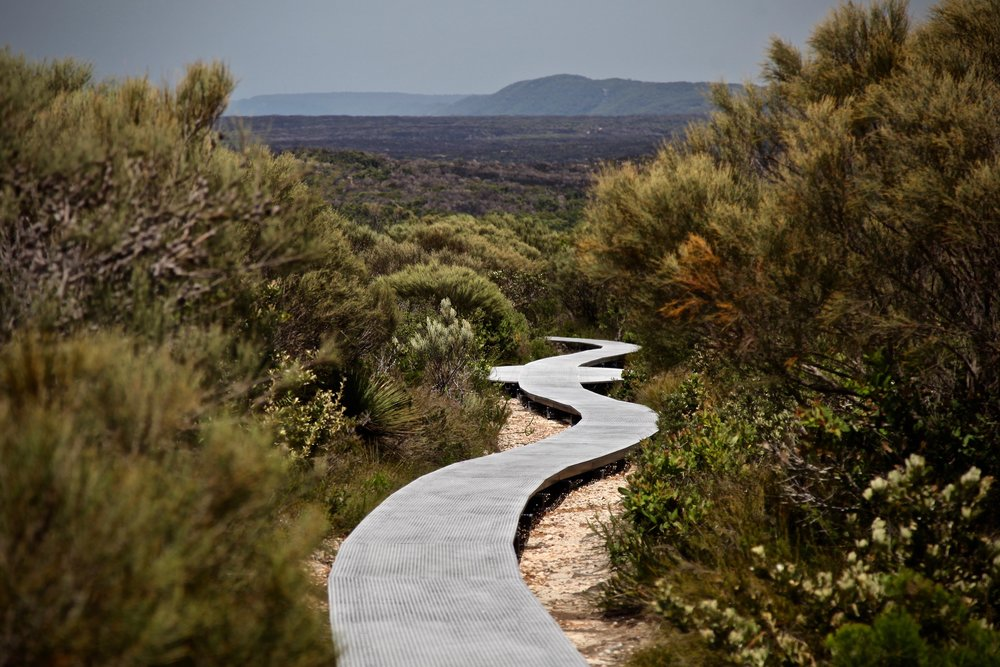 The NSW Government is investing in building boardwalk for popular sections of the Coast Track to make it more accessible and to protect the surrounding bushland.
