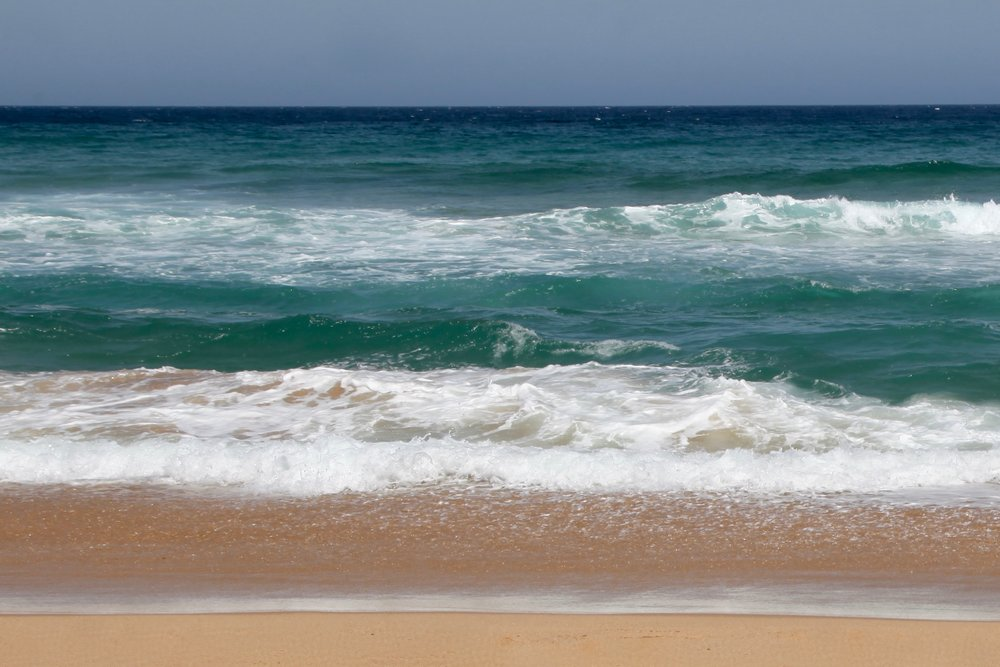 Garie Beach in summer ✌