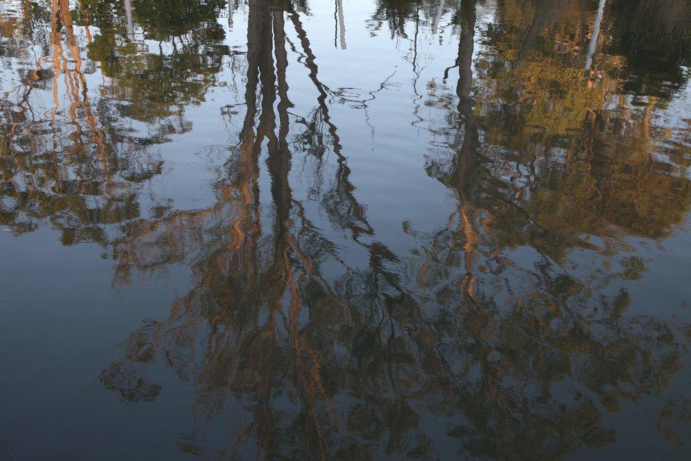valentine-water-reflections.jpg