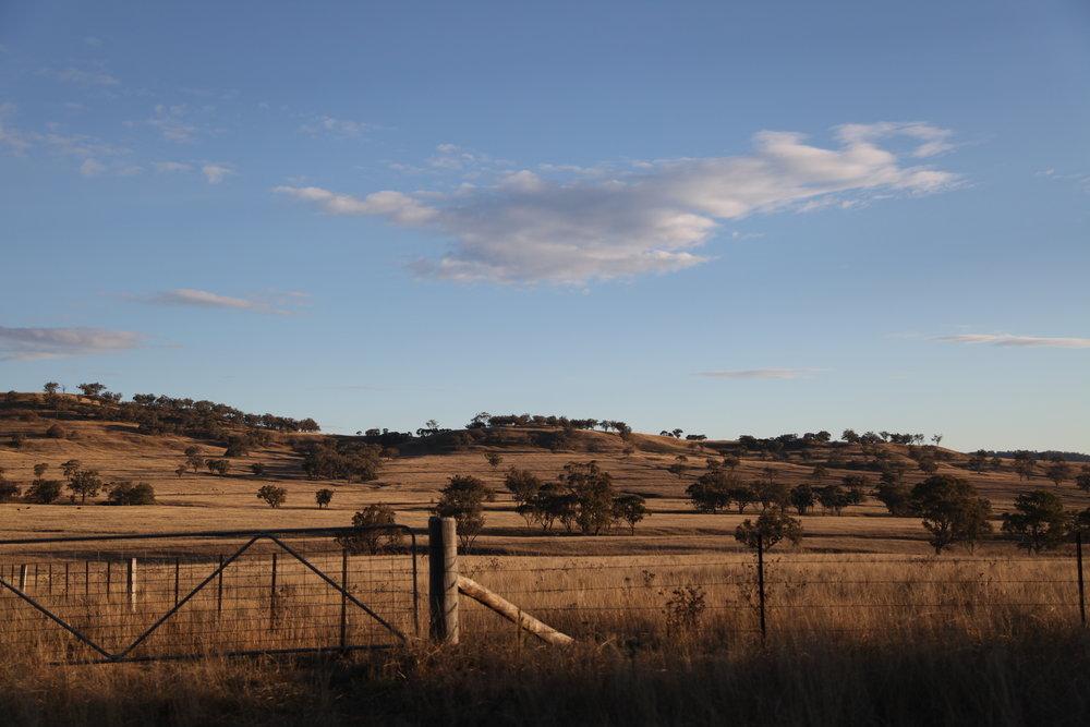 Farming land on the road to Quirindi.