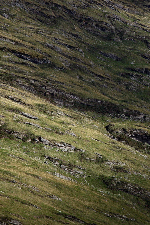 mt-aspiring-national-park-mountain-view.jpg