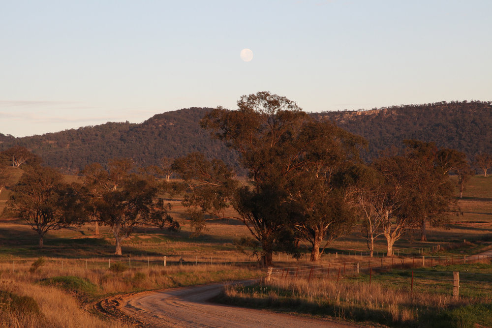 The moon over the Bylong Valley farm land at first light.