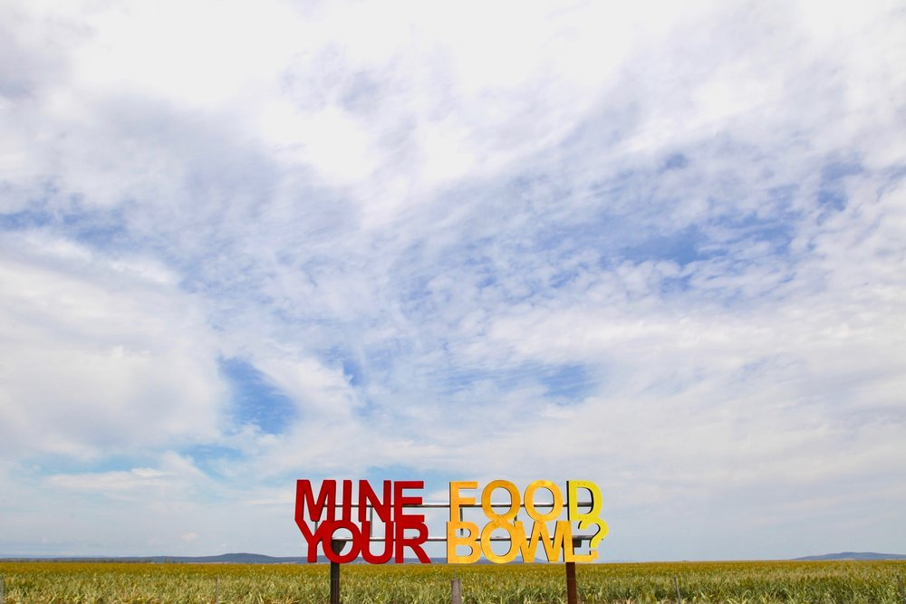 """""""Mine your food bowl?"""" art installation at Breeza in north west NSW, protesting the encroachment of coal mining on agricultural land."""