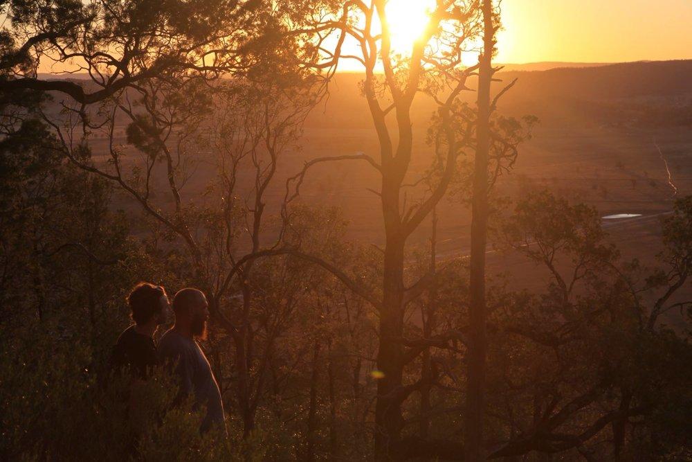 golden-hour-sunset-leard-forest.jpg