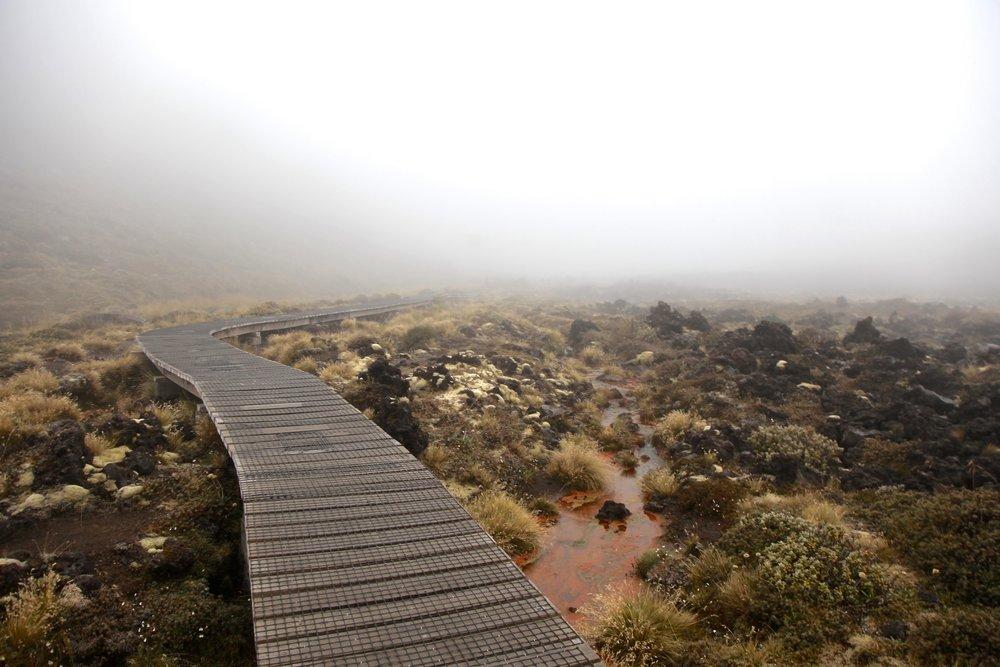 tongariro-alpine-crossing-walk.jpg