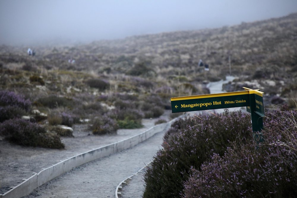 You can also experience Tongariro National Park on the multi-day  Tongariro Northern Circuit Great Walk  and stay in backcountry huts including the Mangatepopo Hut.