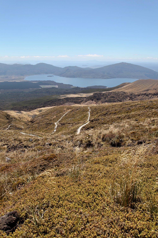 tongaririo-alpine-crossing-hike.jpg