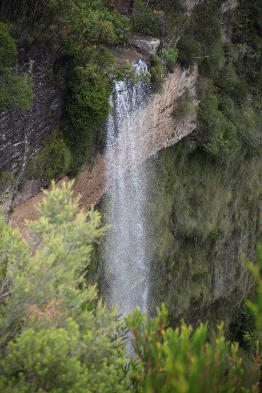 Waterfall viewed from Cliff Top Track